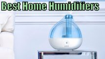 Best House Humidifiers